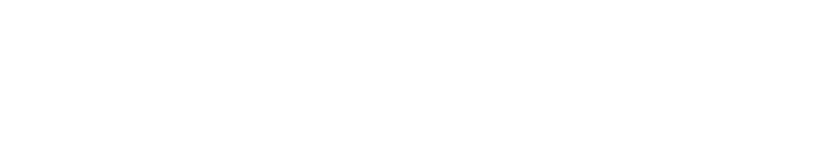 TSY_Logo_W